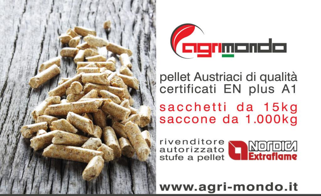 Agrimondo pellet dispositivo arresto motori lombardini - Stufe a pellet poco profonde ...